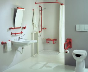 Disability RemodelingHandicap RemodelingAging In PlaceUniversal - Bathroom modifications for disabled